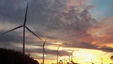 El Gobierno lanza un golpe millonario contra renovables fallidas de las 'megasubastas' de Rajoy