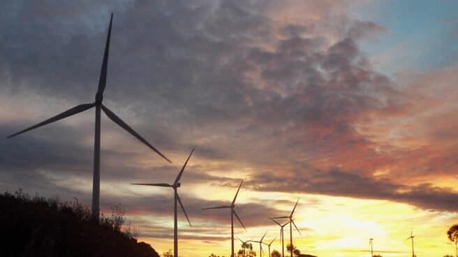 Un parque de energía eólica.