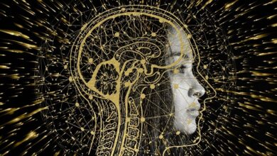 Localizan biomarcadores cerebrales para la detección de alzhéimer precozmente