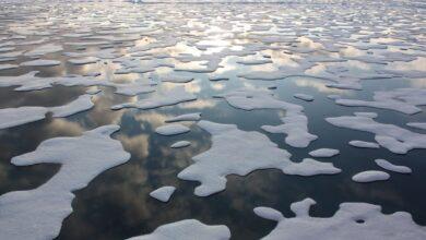 El parón del Covid en 2020 no frena al cambio climático