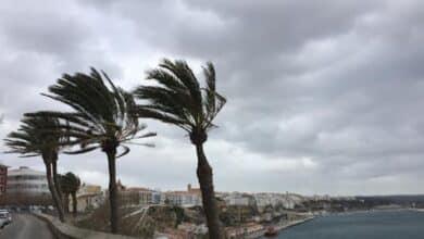 Descubre cuándo remitirá el temporal por viento y lluvia en función de dónde vives