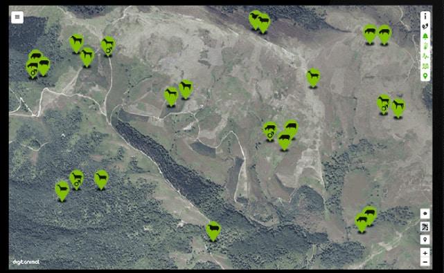 Imagen de la monitorización de ganado por satélite.