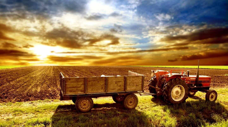 ayudas agricultura