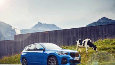 BMW: a grandes males, las mejores soluciones