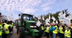 """Los agricultores cortan con tractores los accesos a Sevilla a la espera del decreto del Gobierno: """"Queremos precios dignos"""""""