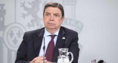 Planas, un ministro proteccionista en un gobierno 'low cost'