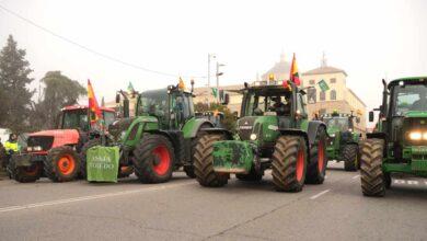 El Gobierno quiere que los grandes 'súper' suban los precios para calmar a los agricultores