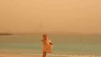 Galería: la espectacular calima que se ha posado sobre las Islas Canarias