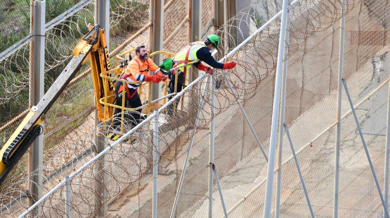 Dos operarios, trabajando en la retirada de las concertinas que coronan la valla fronteriza de Ceuta.