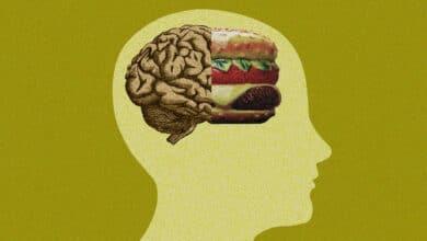 """""""Comer mal empeora la memoria, el razonamiento y la capacidad para decidir"""""""
