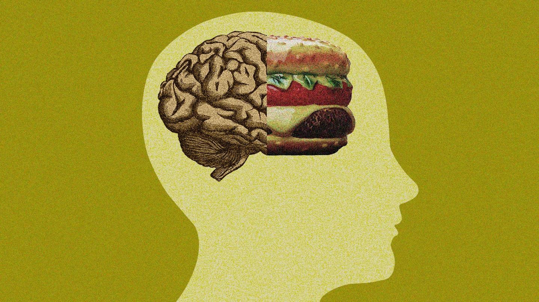 Resultado de imagen de antonio escribano dieta para el cerebro