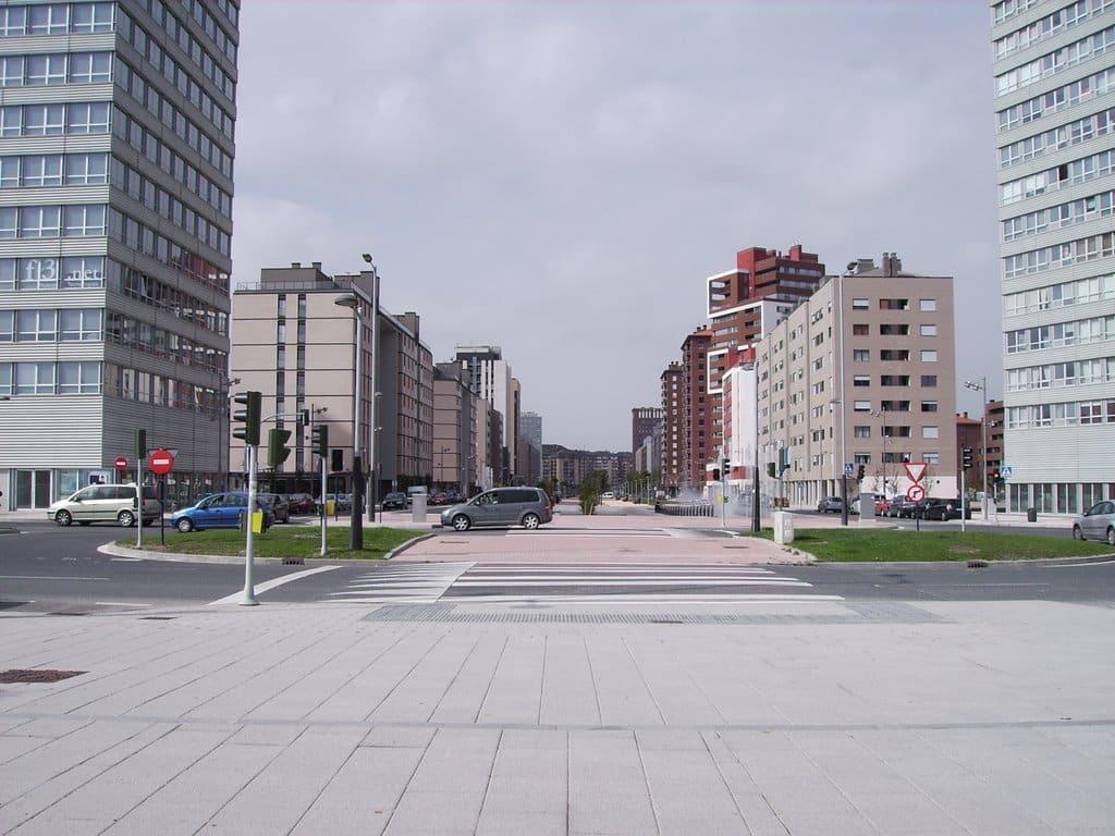 Avenida Juan Carlos I de Vitoria.