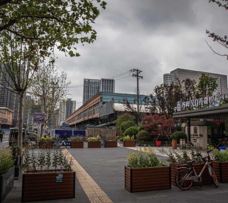 La OMS visita el mercado de Huanan, en Wuhan, uno de los orígenes de la pandemia