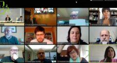 Imagen de la sesión telemática de la Diputación Permanente del Parlamento Vasco celebrada hoy.