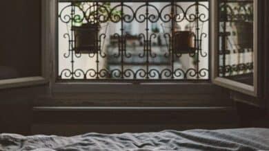La enfermedad que tuvo un año a una escritora aislada en su cuarto