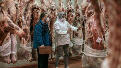 El Gobierno anima al consumo de cordero, pescado y queso de cabra para ayudar a los productores