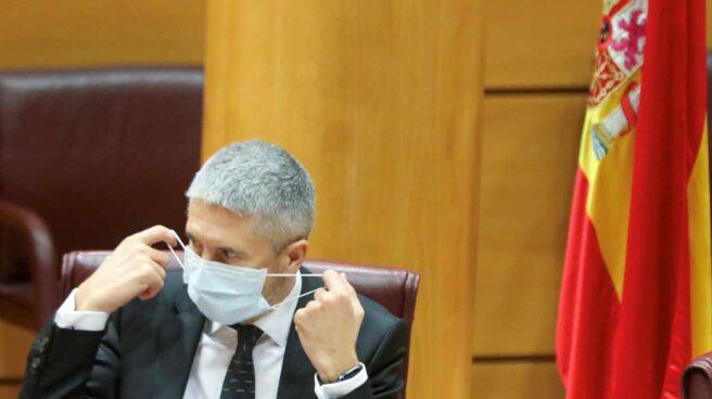 El ministro del Interior, Fernando Grande-Marlaska, este viernes en el Senado.