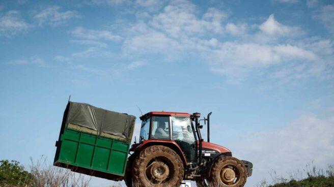 Un tractorista, en plenas labores de recogida de una cosecha en Castilla-La Mancha.