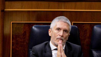 Marlaska aparta también al 'número 3' de la Guardia Civil, crítico con el cese de Pérez de los Cobos