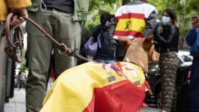 Fotogalería: el perro Barry y otras imágenes de la protesta del barrio de Salamanca