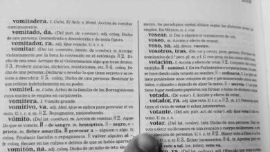 El 'diccionario de campaña' para entender el 12-J en Euskadi