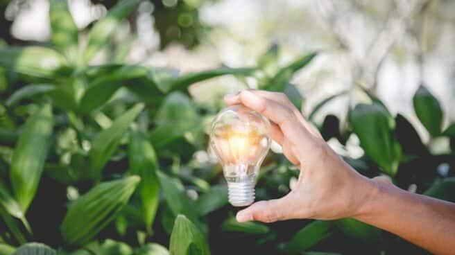 innovación pymes