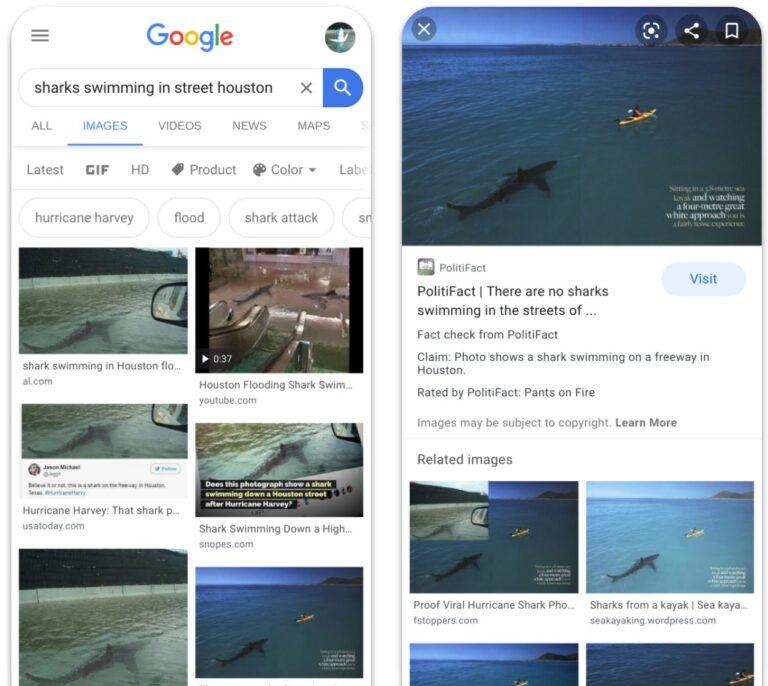 "El ""fact-checking"" llega a Google imágenes"