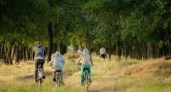 Consejos para enseñar a tus hijos a montar en bici fácilmente y evitar errores