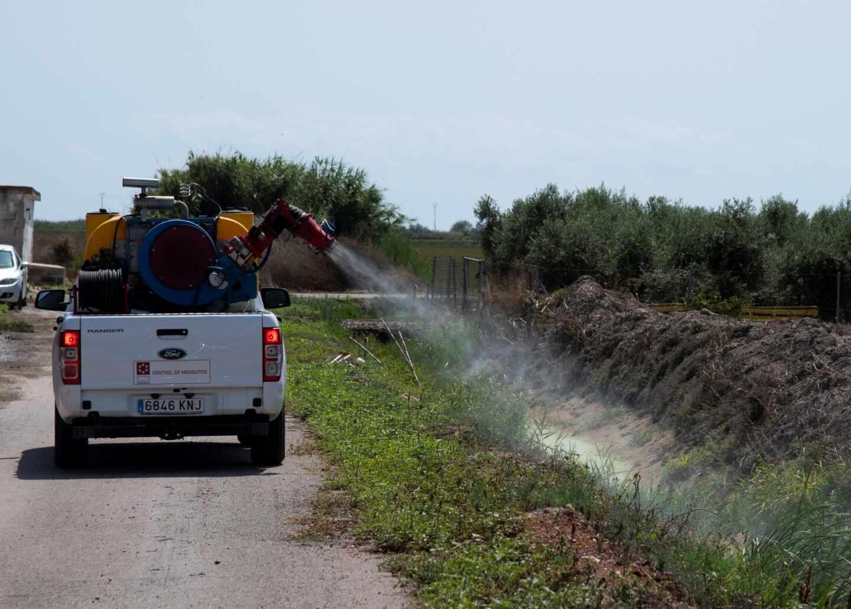 La Diputación de Castellón aplica tratamientos contra el mosquito tigre en la provincia.