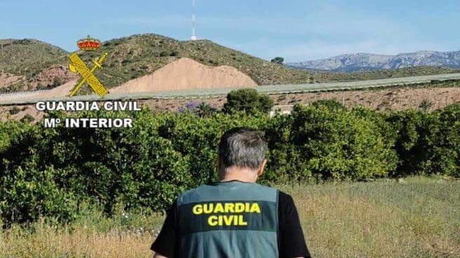 Un Guardia Civil de espaldas.