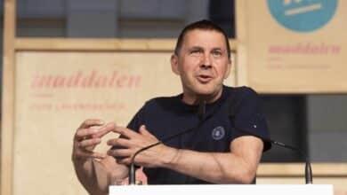 """Bildu acusa al Gobierno de ser """"responsable político"""" de la muerte de presos de ETA"""