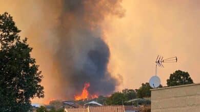 Tres incendios forestales, dos controlados, arrasan 850 hectáreas en Ourense