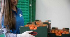 """La Fundación """"la Caixa"""", con el apoyo  de CaixaBank, recauda 3,3 millones de euros para los Bancos de Alimentos"""