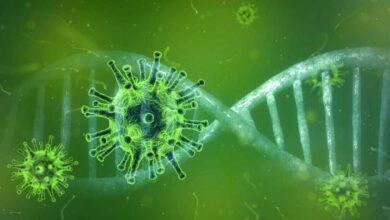 ¿Por qué unos se infectan y otros no? La respuesta está en los genes