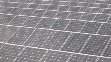 Avalancha de peticiones de más renovables el día antes de la ley contra la especulación