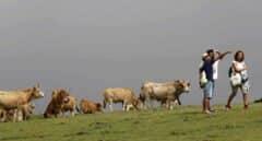 Asturias también solicita a Sánchez el estado de alarma