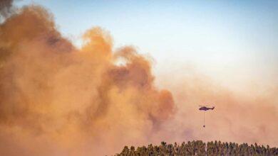 El fuego arrasa más de 53.000 hectáreas en lo que va de año en España