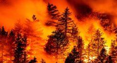 El humo de los fuegos de EE.UU cubre ya 1,5 millones de km del Pacífico