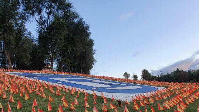 Banderas covid m-30