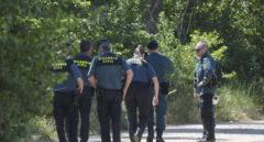 ¿Una pantera negra en Granada? La Guardia Civil activa la búsqueda