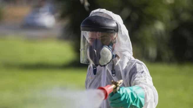 Un trabajador durante las labores de fumigación contra los mosquitos causantes del virus del Nilo en Coria del Río, Sevilla.