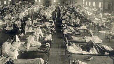 De la genética nazi a la Gripe Española: la serie que desmonta bulos históricos