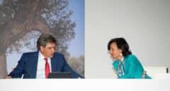 """Botín reclama un """"esfuerzo común"""" de empresas y gobiernos para salir de la crisis"""