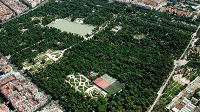 Seis parques de Madrid para visitar durante el confinamiento