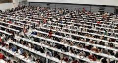Euskadi: un empleado público cada 15 habitantes tras engordar un 7% su Administración