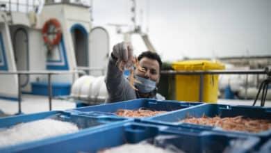 """Los pescadores estallan ante el """"preocupante"""" acuerdo del Brexit: """"Es un día negro para el sector"""""""