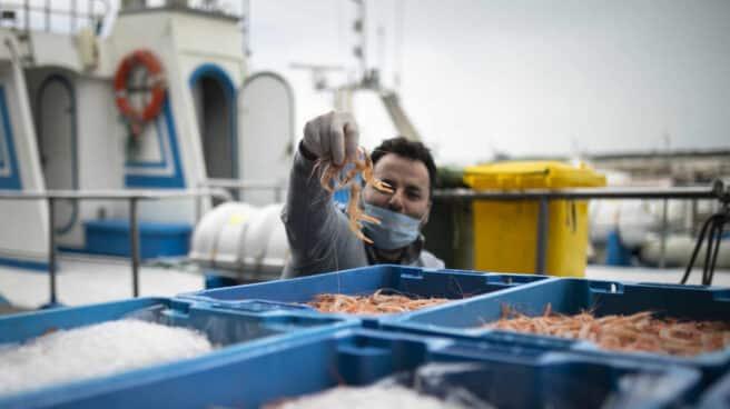 Un pescador con mascarilla enseña el género a la cámara