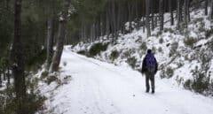 Paisaje nevado en el área de La Pedriza