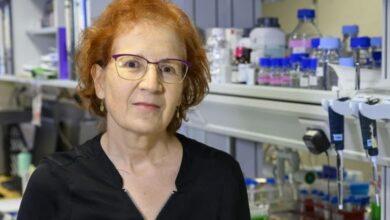 """Margarita del Val: """"Si hay dos vacunas conviene que se dedique cada una a diferentes segmentos de población"""""""