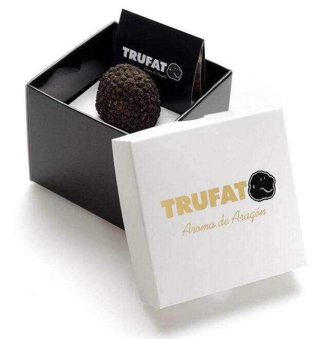 trufa-negra-precio-1024x1047